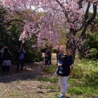 Neu in Tokio - www.expatmamas.de/ - #lebeninjapan #expatleben #imauslandzuhause