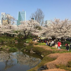 Neu in Tokio - www.expatmamas.de/expatmamas-blog/ #lebeninjapan #expatleben #imauslandzuhause