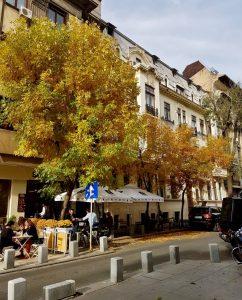 Expatleben in Rumänien - www.expatmamas.de/expatmamas-blog/ - #expatleben #rumänien #expatmamas