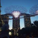 Singapur hoch 3 #expatblogs #expatmamas #lebeninsingapur