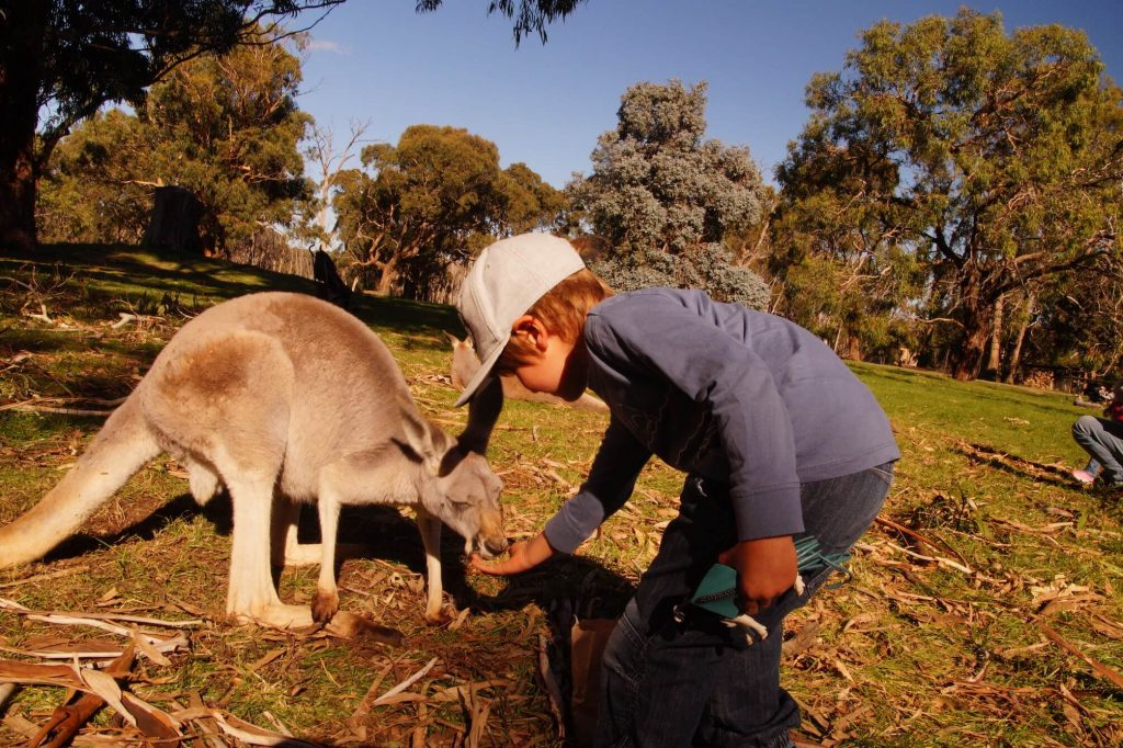 Neu in Australien - www.expatmamas.de/blog/ #imauslandzuhause #expatmamas #australien